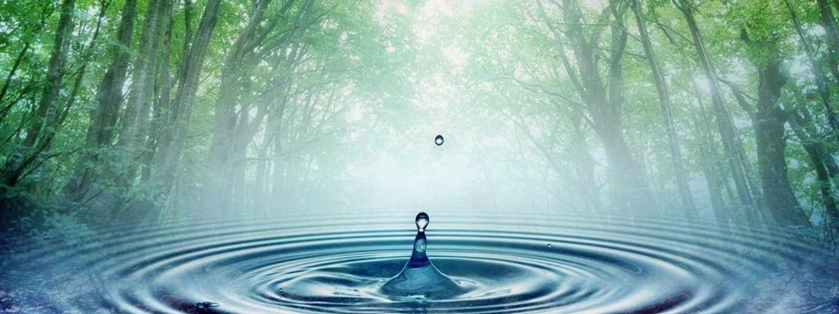 Crisis del Agua